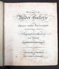 systematische-bildergalerie-zur-allg-dt-real-encyclopaedie-um-1830-m-vielen-lithos